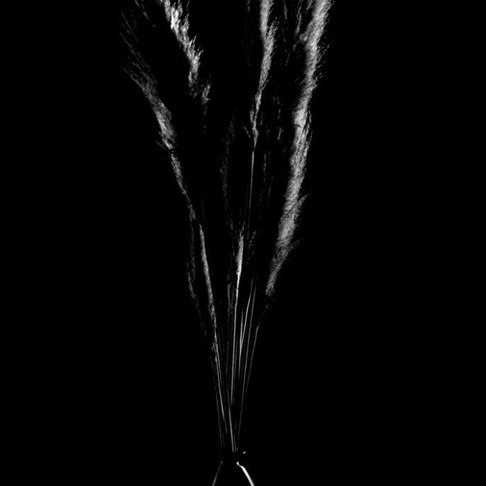 Photographe professionnel produit publicité perpignan carcassonne